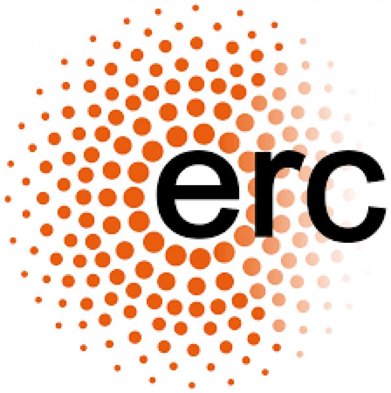 ERC Consolidator Grant awarded to fellow Shaul Shalvi