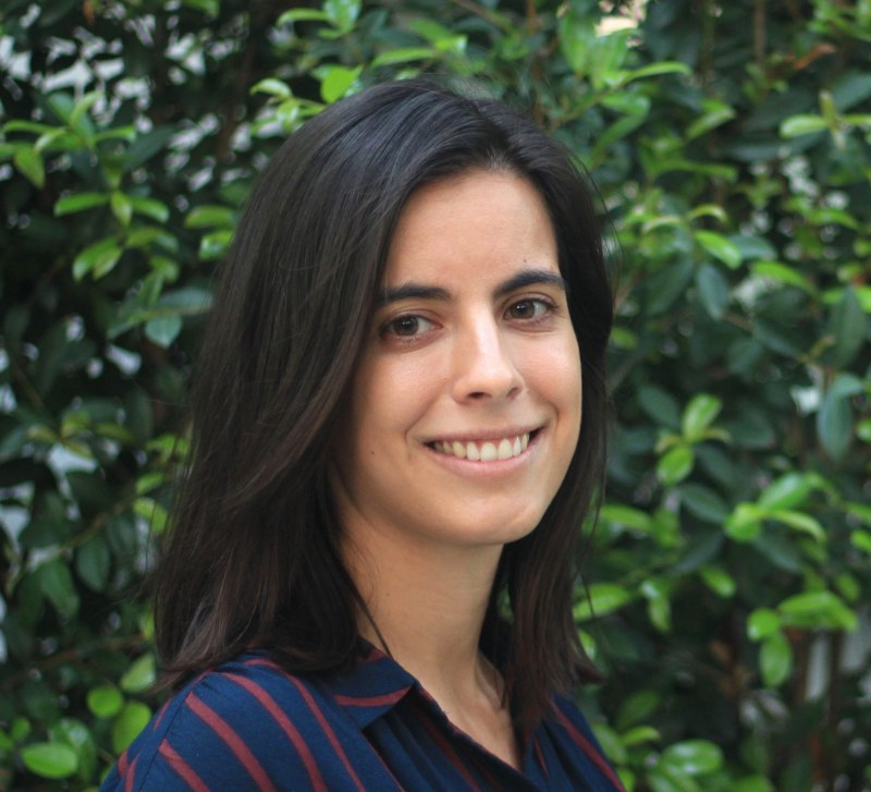 New Candidate fellow: Ana Figueiredo